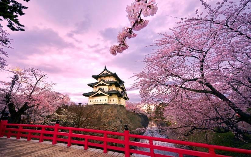 Gửi hàng đi Nhật Bản bằng đường hàng không tốc hành, nhanh chóng và tiết kiệm nhất