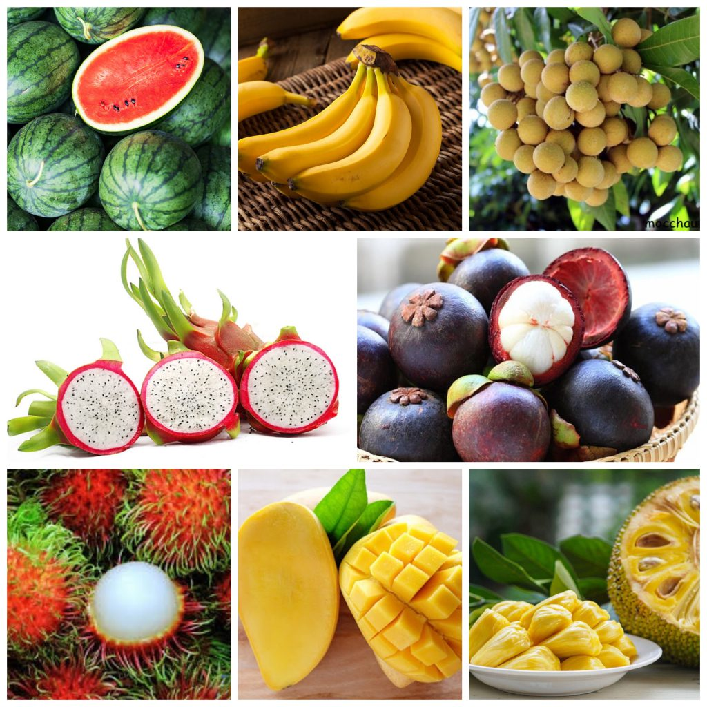 Dịch vụ vận chuyển trái cây giá rẻ đảm bảo uy tín
