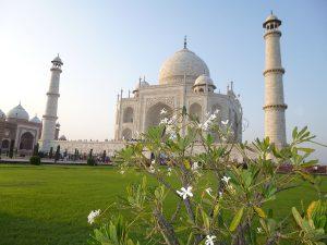 Dịch vụ chuyển phát nhanh đi Ấn Độ nhanh chóng, uy tín, giá rẻ